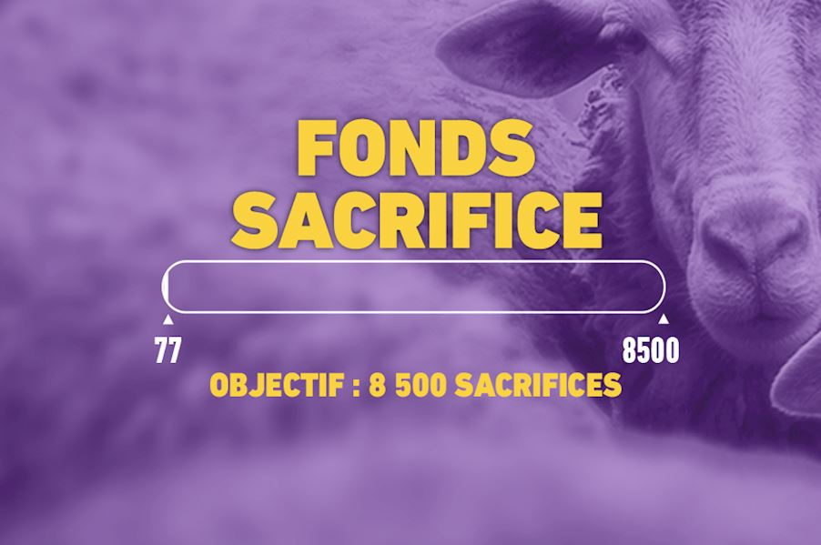 Aid al Adha - Fonds Sacrifices